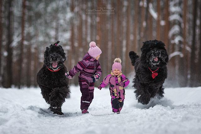 小朋友与大狗狗