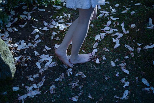 花瓣满路和女子的脚