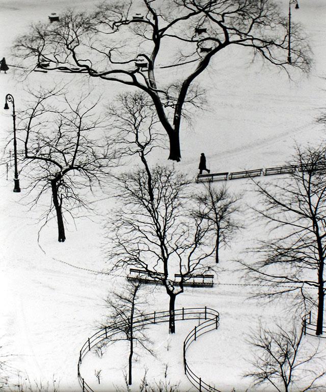 1954年,华盛顿广场